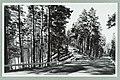 Nervanderin kummun mäki, Tie Valtionhotellille, Albin Aaltonen 1950s PK0134.jpg
