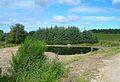 New Pond at Burntack - geograph.org.uk - 517396.jpg