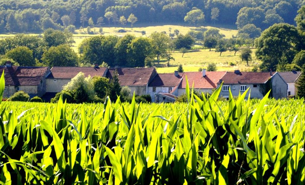 Nijon (Haute-Marne)