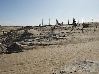 Niya ruins - Niya site where Aurel Stein found  wooden tablets