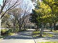 Nojima Park.JPG