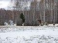 Novosibirsky District, Novosibirsk Oblast, Russia - panoramio (11).jpg
