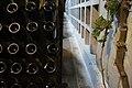 Novy Svet, Crimea, Novy Svet Winery, Wine Bottles.jpg
