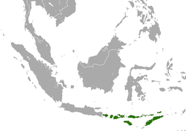 Nusatenggara Short-nosed Fruit Bat area.png