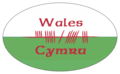 "Ogham letters for ""Cymru"" on bumper sticker - ""Cymru"" in Ogham-Schrift auf Autoaufkleber.png"