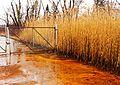 Ohio Valley Mushroom Farm, Acid-Mine Drainage (AMD) (13671209554).jpg