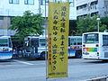 Okinawa kenkei nobori.jpg