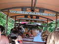 On Kilimanjaro Safaris vehicle.JPG