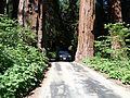 On the General's Highway - Flickr - S. Rae.jpg