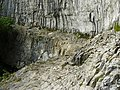 On the Ledge in Malham Cove - geograph.org.uk - 1368151.jpg