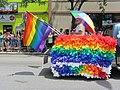 One Man Rainbow Float (9185584328).jpg