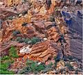 Only 1,500 Feet to Go, Zion NP, Angel's Landing Trail 5-1-14zga (14206400819).jpg
