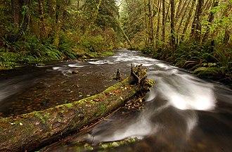 Rock Creek Wilderness - Image: Oregon Rock Creek Wilderness 3 Greg Lief