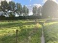 Oude Roode Haan, Groningen, Dal van de Hunze, Euvelgunne, Stainkoelen 22 29 49 847000.jpeg