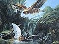 Oudry Oiseau de proie.JPG