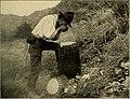 Outing (1885) (14759607236).jpg