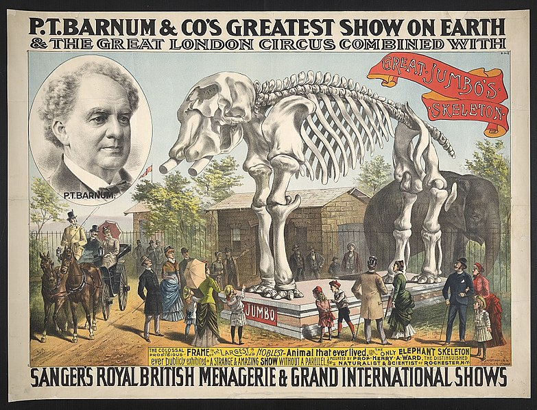 File:P.T. Barnum & Co.'s greatest show on earth & the great London circus combined with Sanger's Royal British menagerie & grand international shows LCCN2012645423.jpg