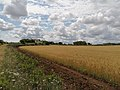 PIC countryside -3.jpg