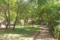 Vista do Parque (4)