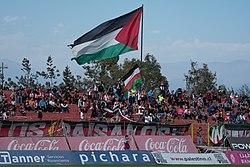 Palestino - Universidad de Concepción, 2018-05-06 - Hinchada de Palestino - 01.jpg