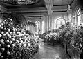 Palm Room or Conservatory, Casa Loma (Fonds 1244, Item 4074).jpg