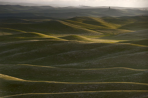 Palouse hills in may 2010