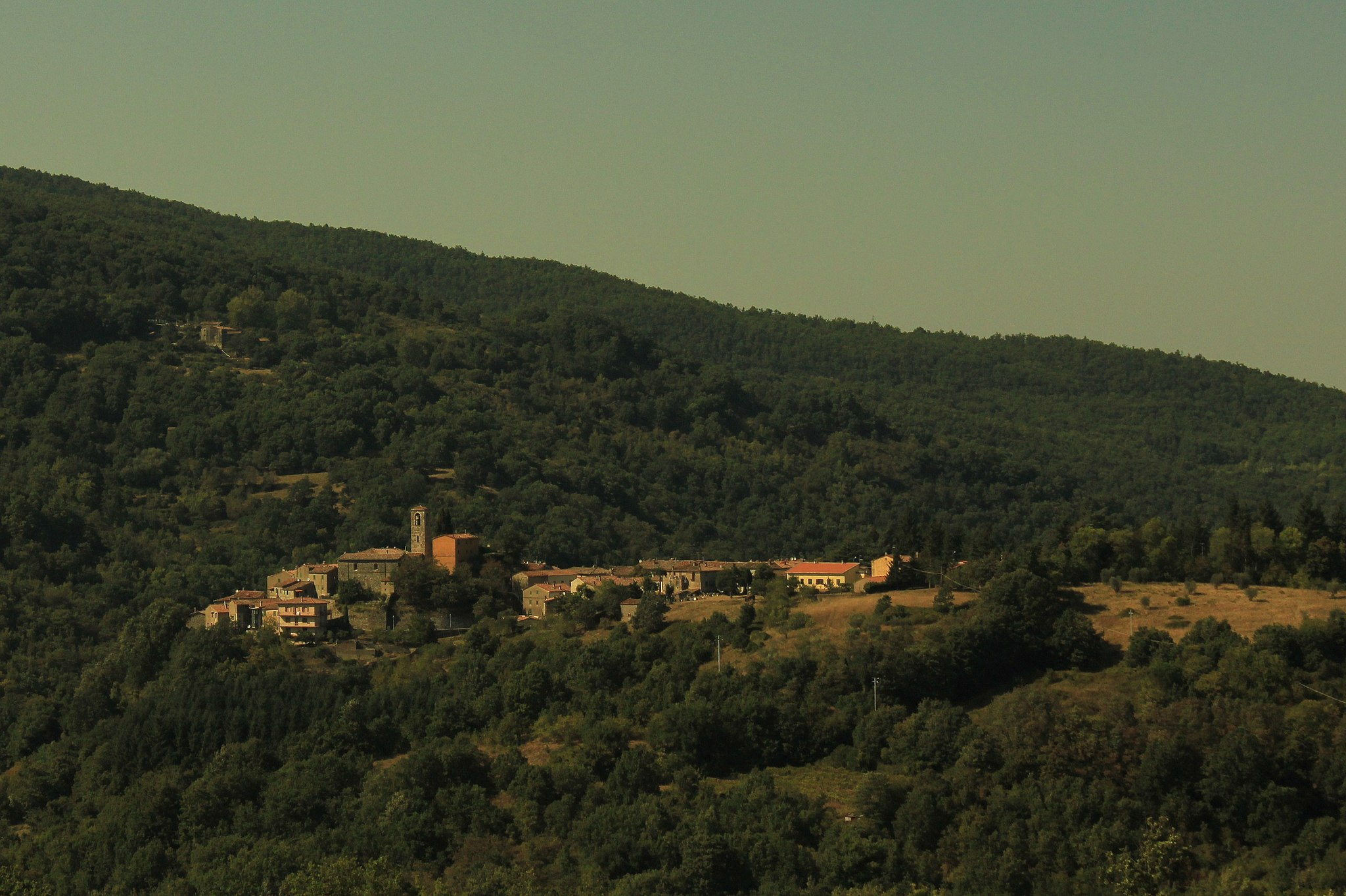Panorama di Travale