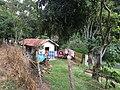 Pantanal, Miguel Pereira - RJ, Brazil - panoramio (20).jpg