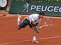 Paris-FR-75-Roland Garros-2 juin 2014-Lajovic-11.jpg