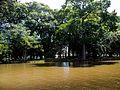 Parque Farroupilha,Porto Alegre,RS.jpg