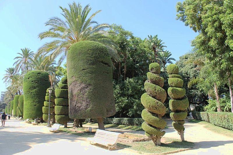 Parque genov s 6182124323 jpg for Jardin geometrico
