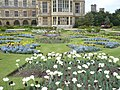 Parterre gardens at Audley End - geograph.org.uk - 1281658.jpg