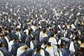 Penguin crowd.jpg