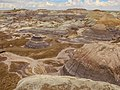 Petrified Forest National Park 1.jpg