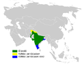 Petrochelidon fluvicola distribution map.png