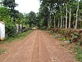 Pezhummoodu, Kerala 691559, India - panoramio (1).jpg