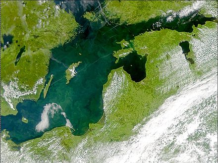 Phytoplankton algal bloom in the Baltic Proper, July 2001 Phytoplankton bloom in the Baltic Sea (July 3, 2001).jpg