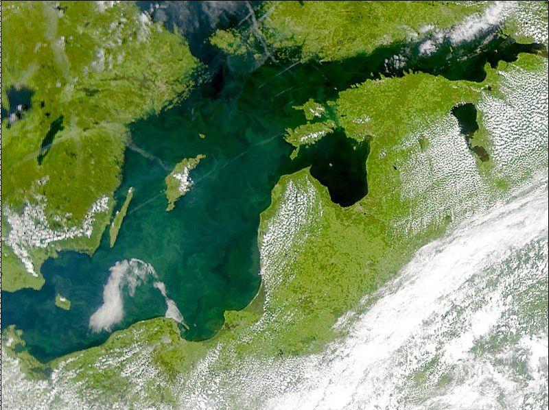 Algblomning i Östersjön i juli 2001. Allt det gröna i havet mellan sydöstra Sverige och Tyskland, Polen och baltstaterna är resultatet av algblomningen.