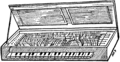 Pianoforte03.png