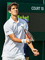 Pierre-Hugues Herbert 2, 2015 Wimbledon Championships - Diliff.jpg