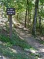 Pinnacles P9040372 trail to CW fort.JPG