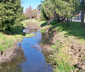 Pinole Creek - Image: Pinole Creek