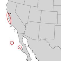 Pinus radiata range map 2.png