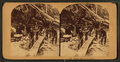 Placer mining in Idaho, from Robert N. Dennis collection of stereoscopic views.png