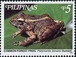 Platymantis dorsalis 1999 stamp of the Philippines.jpg