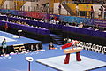 PommelHorse-YOGArtisticGymnastics-BishanSportsHall-Singapore-20100816-01.jpg