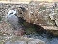 Ponte Veigadallas (O Tameirón, A Gudiña).jpg