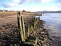 Possibly an old dock at Cardross - geograph.org.uk - 1481234.jpg