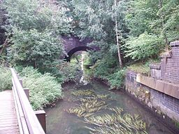 Potteric Carr Bridges over Mother Drain.jpg
