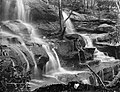 Powerhouse Museum Collection - Mosman Bay Falls (pd).jpg